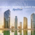 DMCC-Approved-Auditors